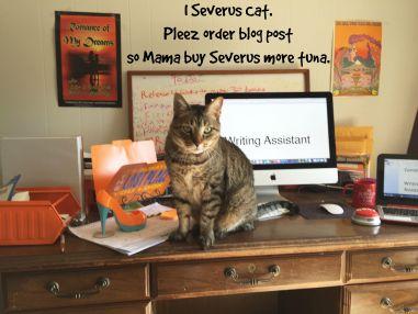 Severus blog post